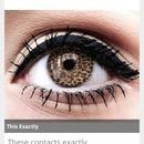 Cheetah Contacts! Cx