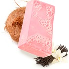 LUSH Rock Star Soap
