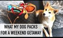 WHAT'S IN MY DOG'S LOUIS VUITTON BAG | PACKING FOR A WEEKEND TRIP | hollyannaeree x eeveeinu