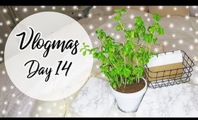 DIY/ Upcycle Herb Pots, Mail Organizer, Marble Boxes   Vlogmas Day 14 ♡