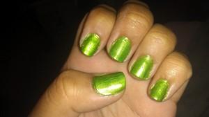 FULL COAT OF A YELLOWISH GREEN