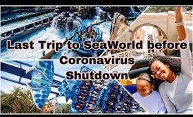Last Trip to SeaWorld Before Quarantine   SeaWorld Vlog   Jessika Fancy