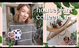 Houseplant Collection | Rhiannon Ashlee
