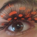 Orange Spotted False Lashes
