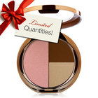 Pur Minerals Natural Beauty Mini Face Palette
