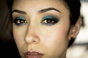 I created this look using both the Urban Decay Electric palette and the Lorac Pro palette