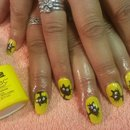 shellac yellow