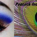 Peacock inpired