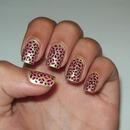New Leopard Design!