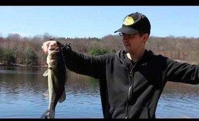 Spring Fishing: Large Mouth Bass