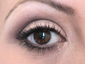 MAC eyeshadow in This and That w Patina in the crease