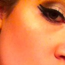 Double winged liner.