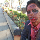 Zombie-O-Rama 2011