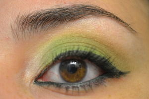 Using NYX For Your Eyes Only palette and Cailyn gel eyeliner in Green.