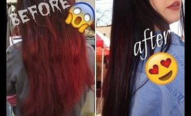 How I dye my EXTREMELY DAMAGED hair | beautybytracey