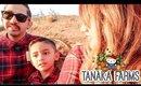 TANAKA FARMS 2019 | FAMILY TIME | KBBQ