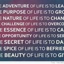 nice quote:)