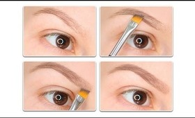 How to fill in your eyebrows with eyeshadow?