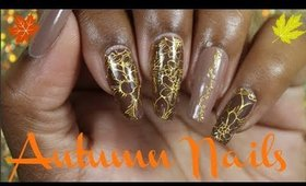 Fall Colors Inspired Nail Art Tutorial Using Nail Stickers