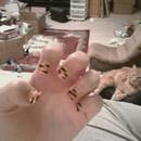 Tiger Full Nail part 2