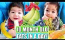 WHAT MY BABY EATS IN A DAY   10 MONTHS OLD