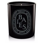 Diptyque 'Baies/Berries' Scented Black Candle