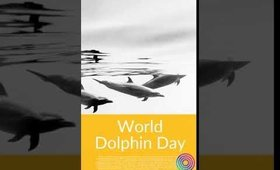 World Dolphin Day