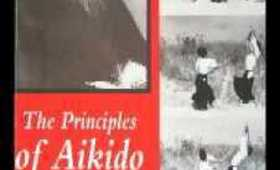 The Voice of Aikido- Musubi