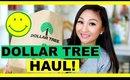 DOLLAR TREE HAUL! #7