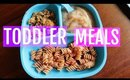 WHAT MY TODDLER EATS | MEAL IDEAS FOR TODDLERS