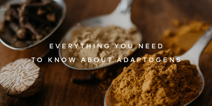 Here's Everything You Need To Know About Adaptogens – Read More.