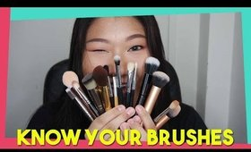 Introduction to Makeup Brushes: Part I