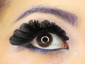Black Feather eyelashes from http://falseeyelashessite.com/F430-Feather-Eyelash.html