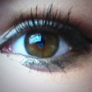 Everday Eye