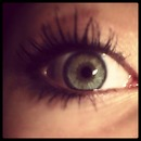 eyee.