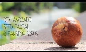 DIY: Avocado Seed Facial Cleanser (EASY)