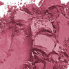 MAC Eye Shadow/ Pro Palette Refill Pan Passionate