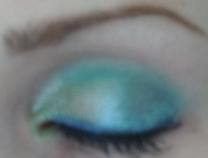 Look using my Coastal Scents Go Palette London