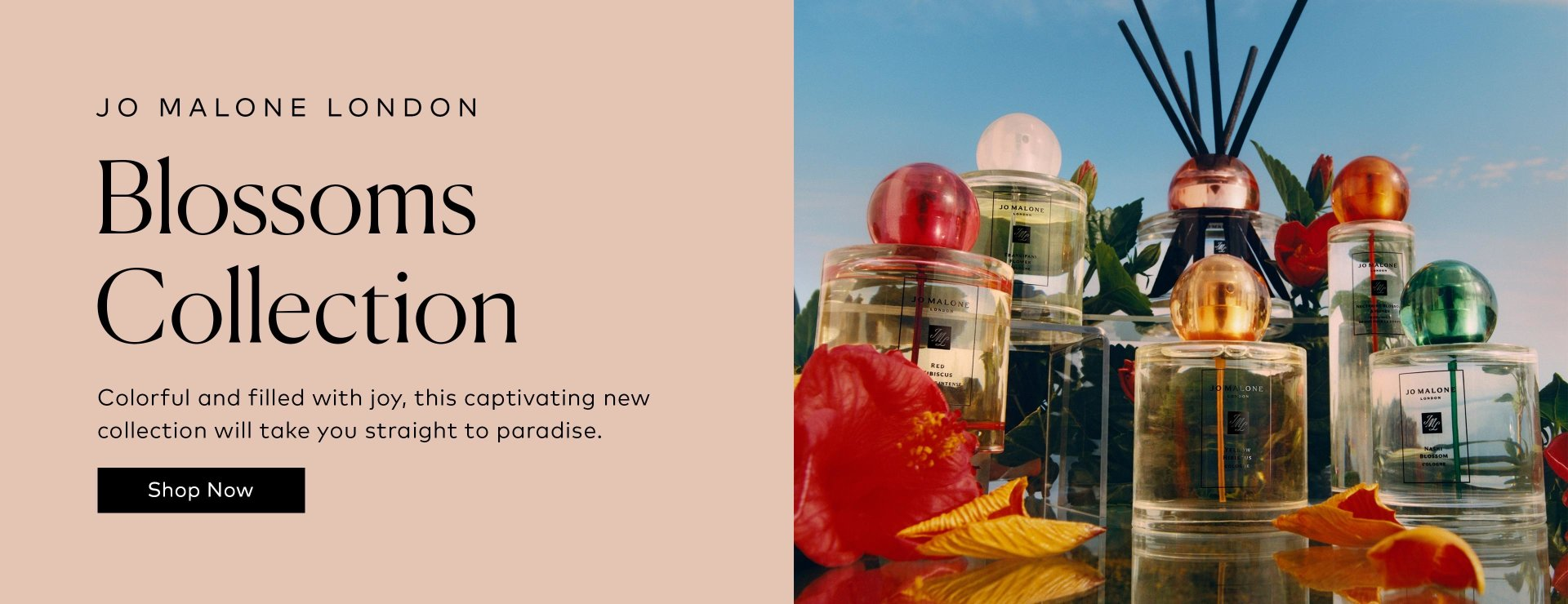 Shop Jo Malone London Blossoms Collection on Beautylish.com
