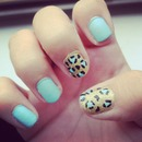 Blue/gold leopard