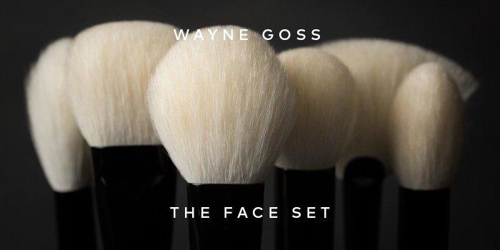 Shop Wayne Goss' The Face Set on Beautylish.com