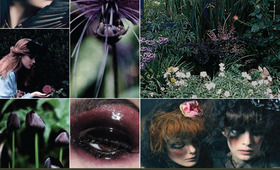 Beauty Mood Board: Wicked Beauty
