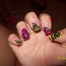 Zebra With Dots :)