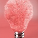 my little pink brush