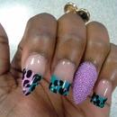 color cheetahs