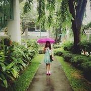 Putrisaninda L.