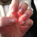 Paw print nails 🐾