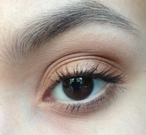 Gold on the lid with a transition color. No Brow Pomade today :)