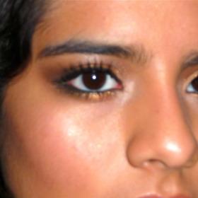 Bronze/Brown Looks