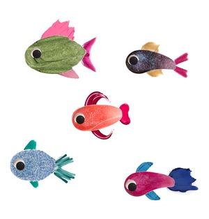 Beauty Fish